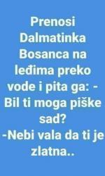 stina.png